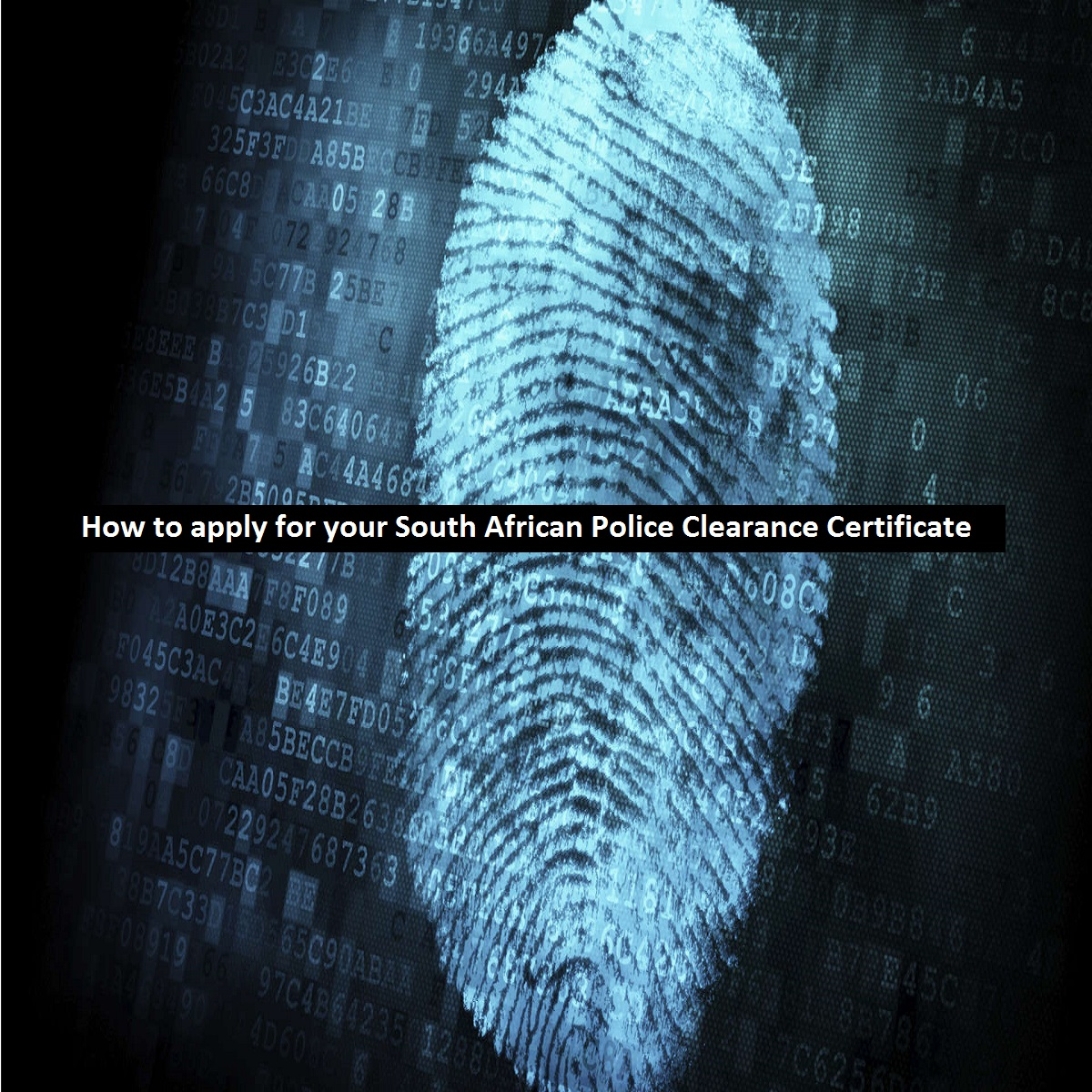 How To Apply For Your South African Police Clearance Certificate